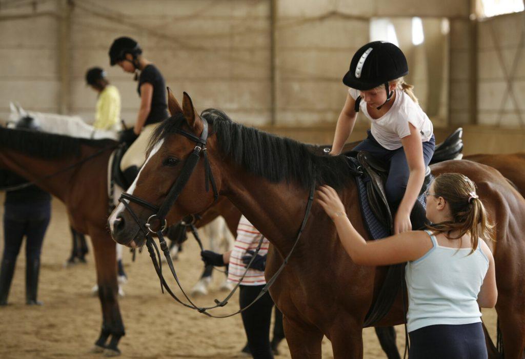 reitunterricht auf gut gerittenen pferden in der reitschule hoeldrichsmuehle