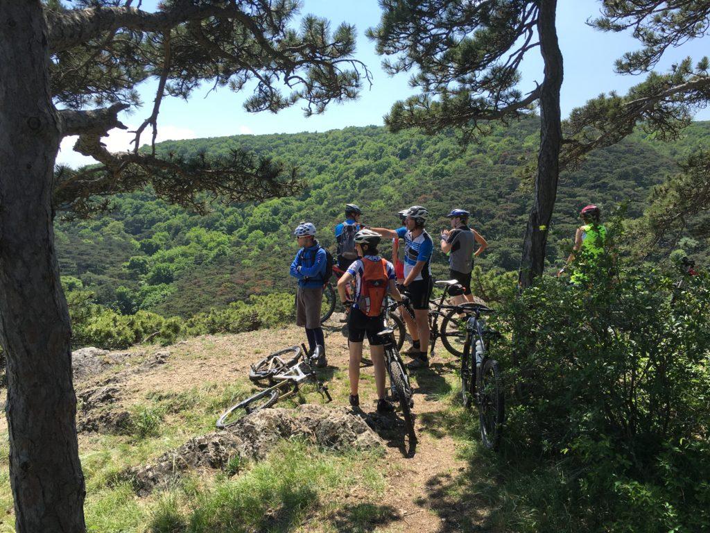 mountainbike am anninger nahe hoeldrichsmuehle