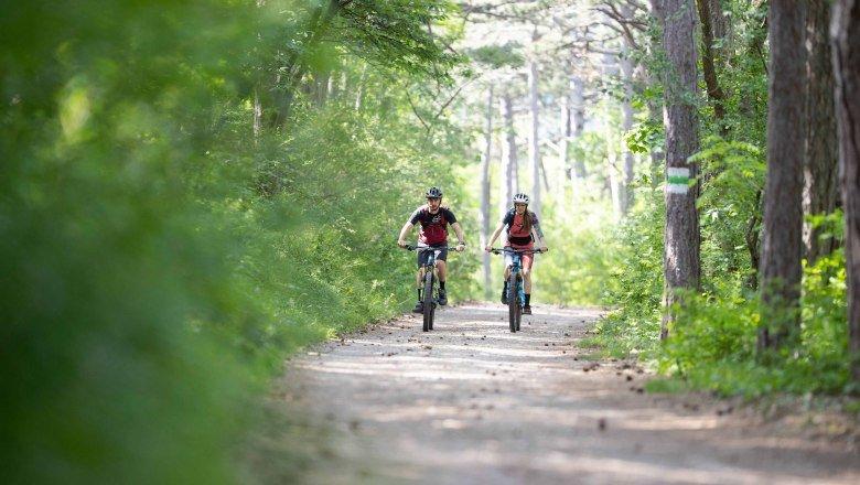 mountainbike paradies anninger bei hotel und restaurant hoeldrichsmuehle