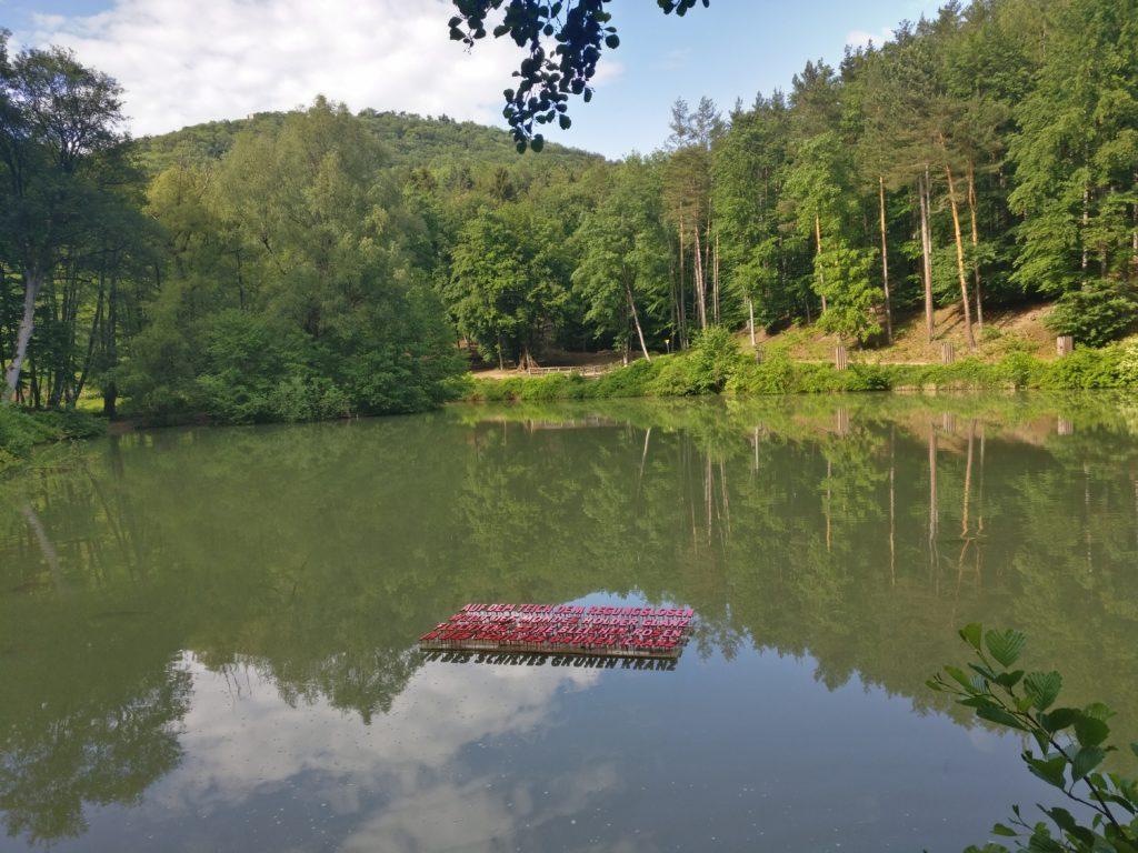 Naturpark Sparbach, Lenauteich (Fotorechte: Naturpark Sparbach, S. Käfer)